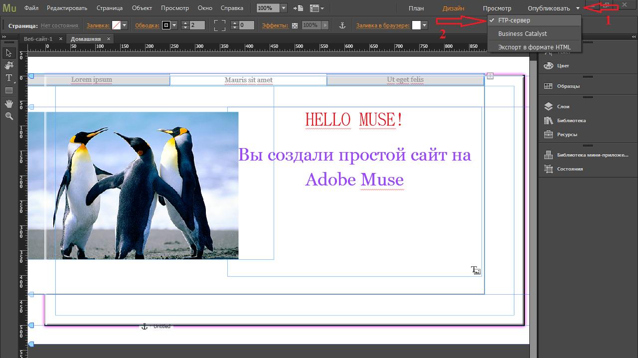 Adobe muse выгрузка сайта на хостинге лучших хостинг по созданию сайтов