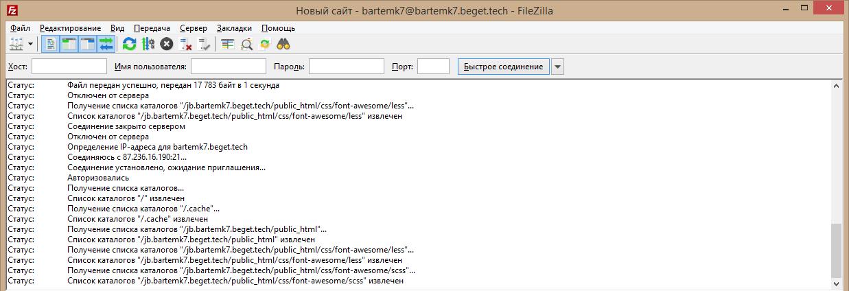 Поле лога соединения в Filezilla